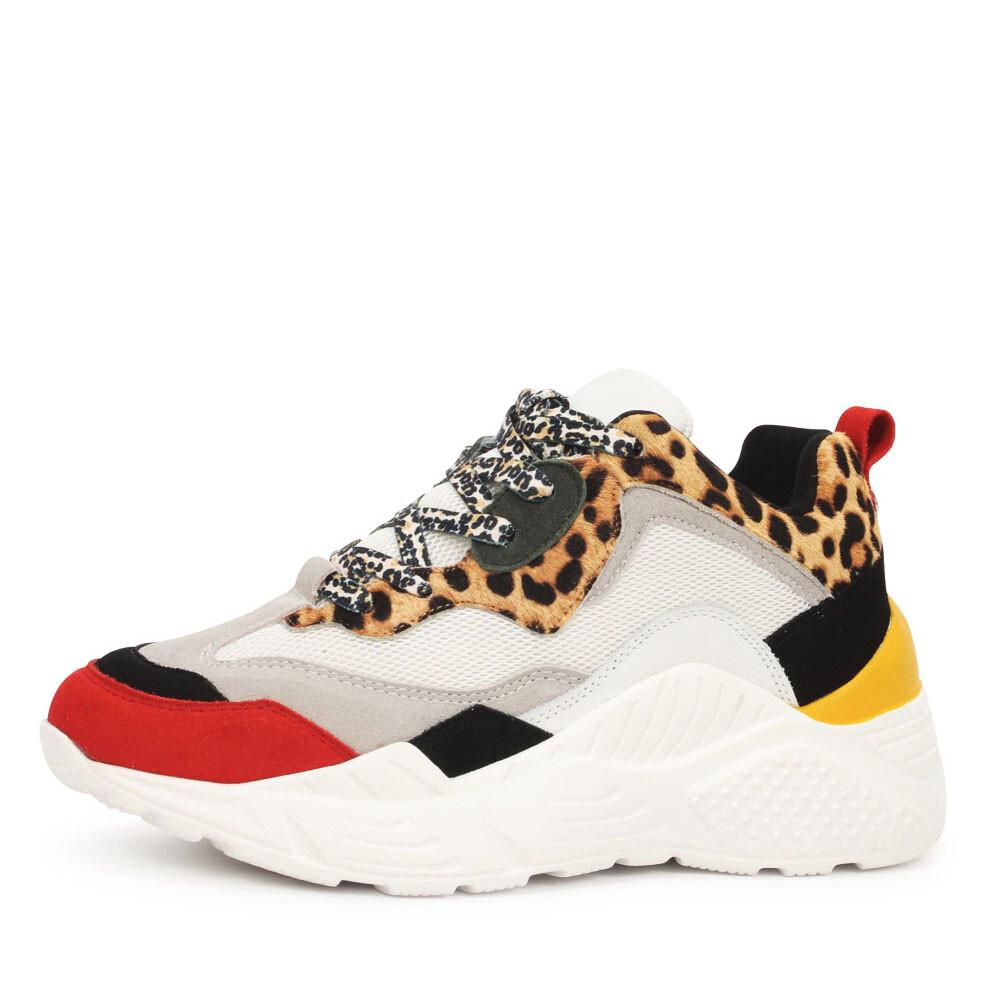 Steve Madden Antonia sneakers leopard